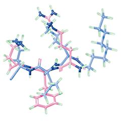 wrinkle-peptide-image