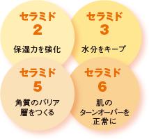 4種のセラミド